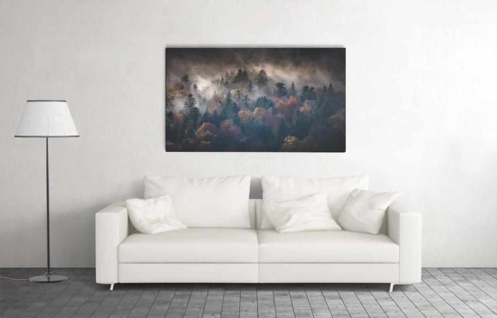Tirage photo décoration d'intérieur ©terra photo